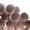 Металлопрокат новый и б/у - Изображение #6, Объявление #145241