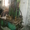 Шлифовки каленвала, расточной, хонинговальный