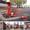 Пылесос парковый автономный ППА-320 #1588249