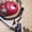 Продам пылесос Electrolux clario 1600 W  #1592125