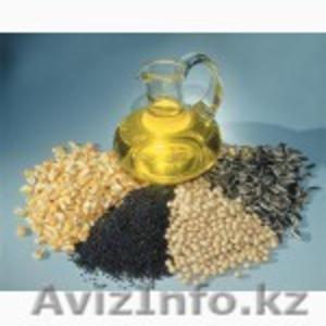 На экспорт подсолнечное масло рафинированное и не рафинированное и др. виды. - Изображение #1, Объявление #1450244