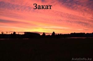 Жилой кирпичный дом на берегу озера. Беларусь - Изображение #10, Объявление #1600466