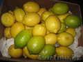 фрукты для оптовиков - Изображение #3, Объявление #59208
