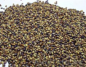 Семена люцерны, клевера№, Объявление #792321