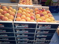 персик из Испании