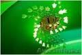 Услуги электрика в Алматы. Электромонтаж в Алматы. - Изображение #4, Объявление #1171274