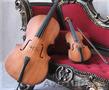 Струнный дует Алматы. Скрипка и виолончель на регистрацию, свадьбу, сбор гостей