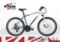 Велосипед Viva Arena 2.0