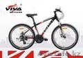 Велосипед Viva Derek