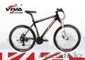 Велосипед Viva Nordic 1.0
