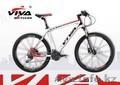 Велосипед Viva TEAM 3.0