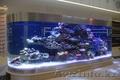 Изготовление и  готовые аквариумы алматы, Объявление #1365122