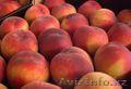 Персики из Испании, Объявление #1423061