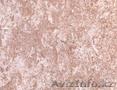 Травертин ( 1,2 слой ) - Изображение #4, Объявление #1424174