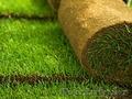 Продажа и укладка рулонного газона в Алматы и Алм.области