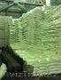 Компания производитель продает сахар на экспорт Украина