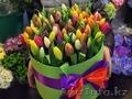 луковицы тюльпанов для выгонки к 8 Марта