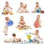Интернет магазин детских игрушек., Объявление #1501186