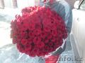 Букет 101 красная роза 50 см в красивом оформлении с бесплатной доставкой Алматы - Изображение #2, Объявление #1505389