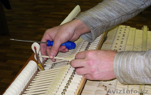 Настройка пианино по камертону качественно.  , Объявление #1523289