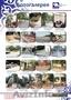 Садово парковые скульптуры, Объявление #1580806