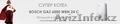 Газовые котлы Bosch - Изображение #4, Объявление #1577779