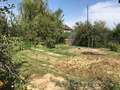 Продаю дачу.садовое общество Ветеран Алатау,район с - Изображение #10, Объявление #1582372