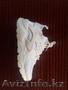 Купи кроссовки для фитнеса. - Изображение #5, Объявление #1588728