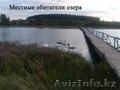 Жилой кирпично-щитовой дом на берегу озера. Беларусь - Изображение #9, Объявление #1600466