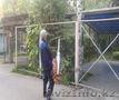 Дезинфекция,  Дератизация и дезинсекция в Алматы
