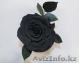 Вечные розы в колбах - Изображение #6, Объявление #1622633