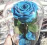 Вечные розы в колбах - Изображение #8, Объявление #1622633
