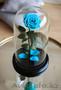 Вечная роза