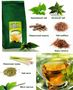 Слим Актив травяной чай от LR